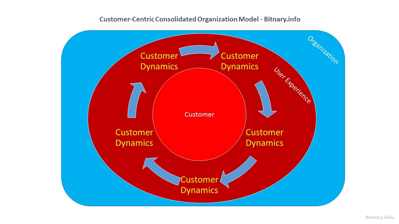 Customer-Centric Consolidated Digital Organization Model - Bitnary.info